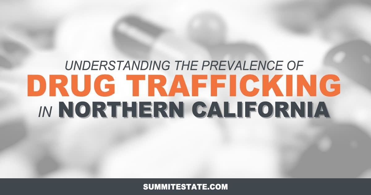 Report on Northern California Drug Statistics and Insights
