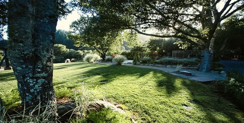 the lawn at summit estates recovery center