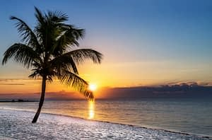 Fort Lauderdale May Work Better for you than a Drug Rehab Tampa.