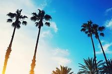 Drug and Alcohol Detox For Residents of Sanford, Florida (FL)