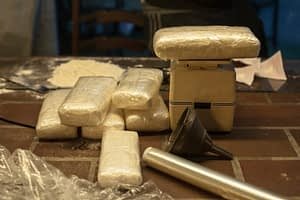 Meth use increasing despite large shipments being seized entering NYC.