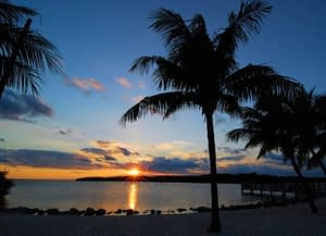 Rehabilitation Melbourne FL offers is pleasant and sunny.