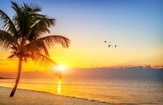 Drug Rehab West Palm Beach has beautiful scenery.