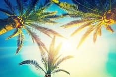 Delray Beach rehab provides some sunshine