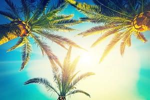 Drug Rehab Fort Lauderdale boasts great weather.