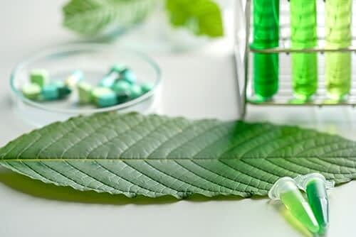 leaf on table leads to question what is kratom