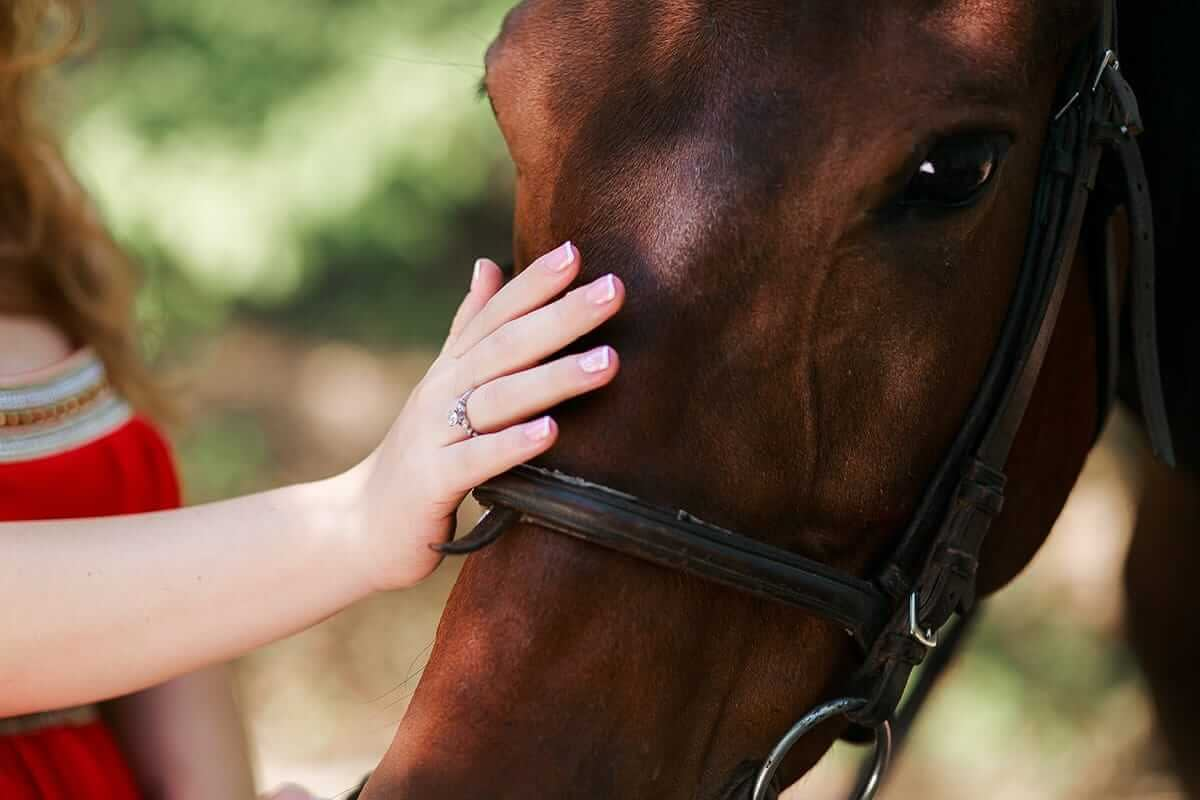 girl in equine therapy petting cute horse